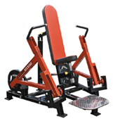 Legend Fitness 6006