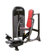 Legend Fitness 1100